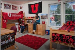 College Roommates in Dorm